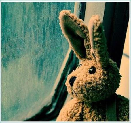 Фото Плюшевый заяц смотрит в дождливое окно (© SK), добавлено: 12.04.2013 13:08