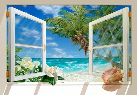 Фото Вид из окна на лазурный пляж и пальмы на подоконнике раковина и белые цветы