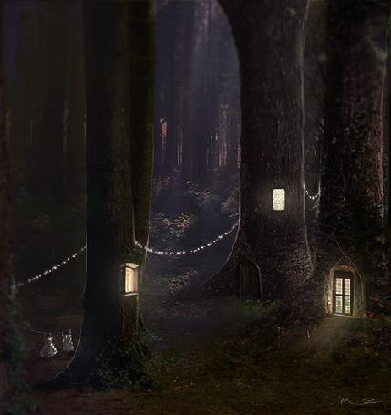 Фото Переливающиеся окна в больших деревьях, на одном из них сушатся вещи