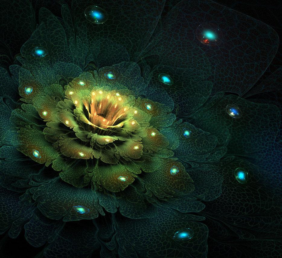самый волшебный цветок картинки