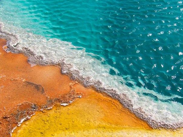 Фото Горячий источник, Йеллоустонский национальный парк / Yellowstone