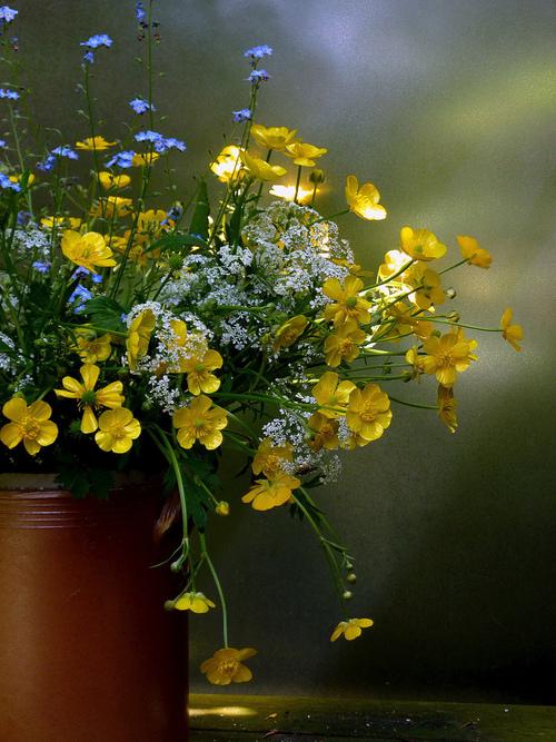 Фото Букет полевых цветов стоит на столе и на него попадает солнечный свет