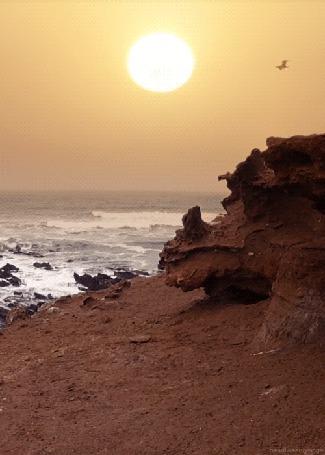 Фото Пролетающие птицы на фоне бьющихся об берег морских волн и солнца