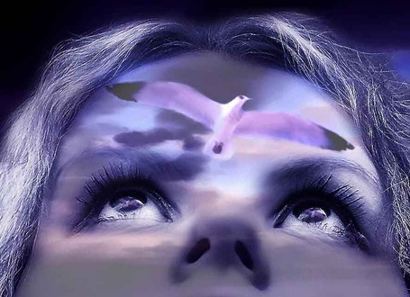 Фото Чайка вылетает из женской головы в области лба