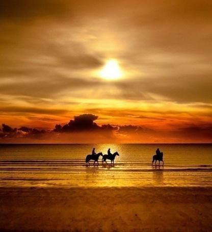 Фото Три человека, верхом на лошадях, идут по берегу моря на фоне оранжевого заката
