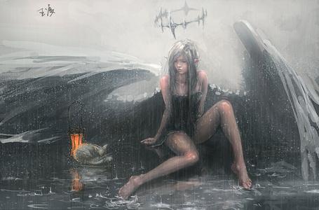Фото Девушка - эльф с крыльями сидит в дождь, рядом лежит свернувшись в клубок кошка и стоит фонарь