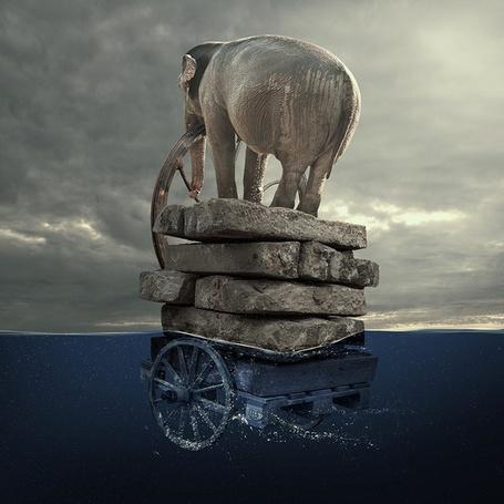 Фото Слон стоит за штурвалом, управляя повозкой в море, Caras Ionut (© ), добавлено: 07.05.2013 01:06