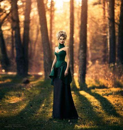 Фото девушка в черном платье в лесу