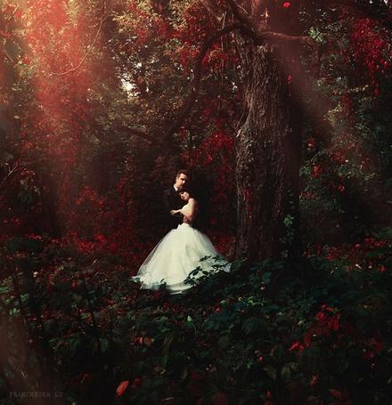 Фото Мужчина в черном костюме обнимает девушку в свадебном платье на фоне красной листвы деревьев, фотограф Francheska Lu
