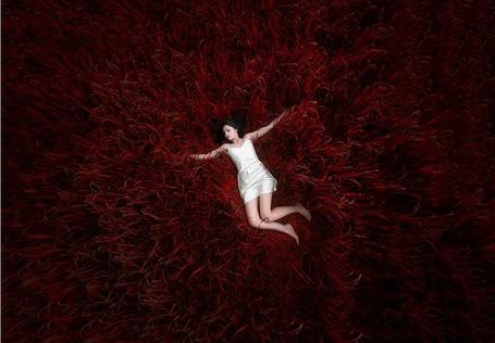 Фото Девушка в белом платье лежит в красной траве, фотограф Christos Lamprianidis (© ), добавлено: 31.05.2013 07:33