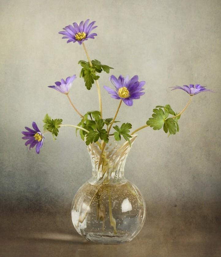 полевые цветы в вазе Pictures to pin on Pinterest: pinstake.com/полевые-цветы-в-вазе