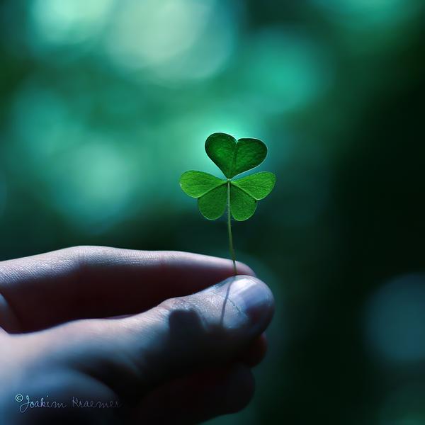 Держи удачу в своих руках