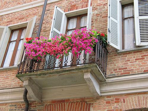 Фото балкон с цветущими красными и розовыми цветами.