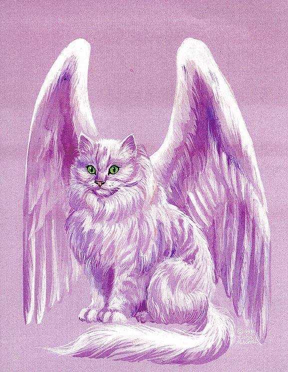 Картинки ангелов кошек