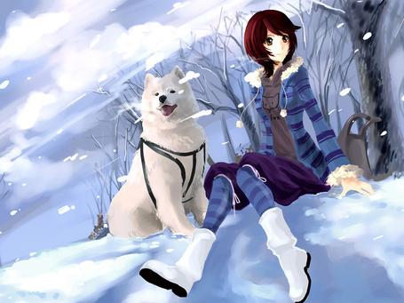Фото Девушка сидит на снегу, рядом сидит собака