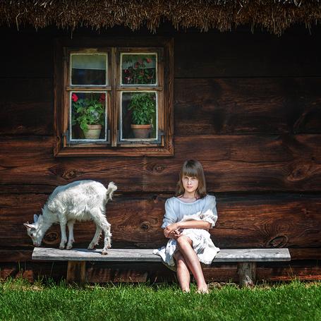 Фото Девочка, сидящая на скамейке возле деревянного дома из рубленых бревен, на подоконнике окна стоят горшки с комнатными цветами, рядом с девочкой стоит белый козленок, фотография Adam Wawrzyniak