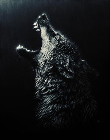 волк молнии фото