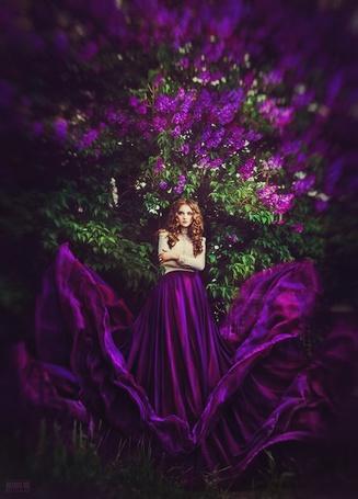 Фото Девушка в фиолетовой юбке стоит на фоне дерева сирени, фотограф Светлана Беляева / Svetlana Belyaeva