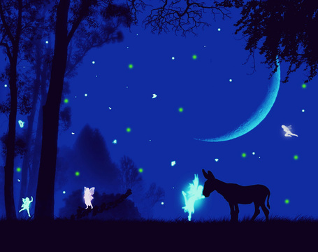 Фото Ослик на фоне звездного неба в сказочном лесу с эльфами