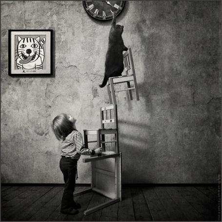 Фото Кот тянется к стрелкам часов, стоя на стульях. Снизу на него глядит маленькая девочка