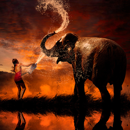 Фото Девочка, стоящая на берегу водоема, обливает из пластиковой бутылки слона, слон, зачерпнув своим хоботом воду, также обливает сам себя на фоне багряного заката, фотография Garas lonut