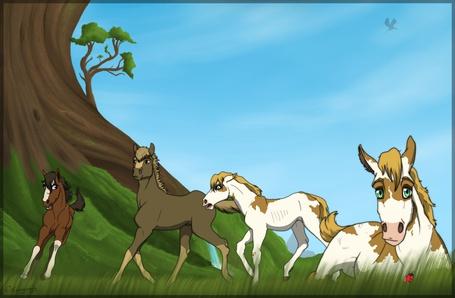 Фото Три лошади резвятся в поле, еще одна прилегла отдохнуть на траве, в небе пролетает дракон