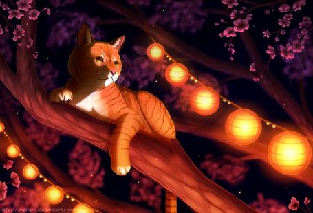 Фото Рыжая кошка лежит на ветке цветущей вишни, художник Chiakiro