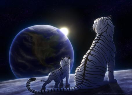Фото Тигр и тигренок смотрят на планету из-за которой выглядывает солнце, художник Chiakiro