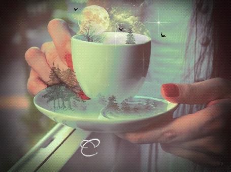 Фото Девушка держит в руках чашку над блюдцем, над которой летают птицы, в чашке и в блюдце деревья, визу появляется надпись С любовью для тебя