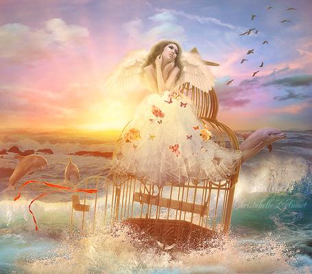 Фото Девушка - ангел сидит в белом платье на большой клетке в море, вокруг плавают дельфины, летают птицы, заходит солнце, фотоарт ChristabelleLAmort