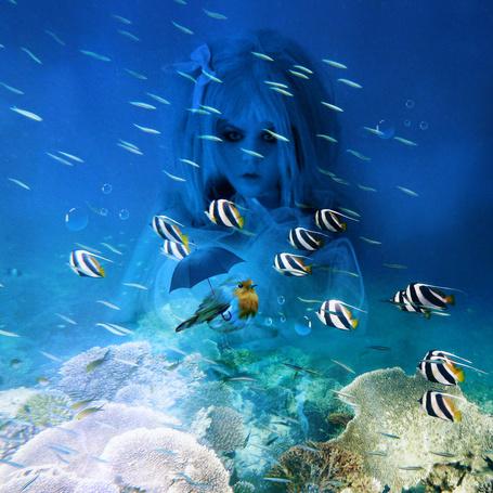 Фото Девушка под водой, перед ней плавают рыбки и птичка с зонтиком, работа Beyza Йылдырым, под ником beyzayildirim77