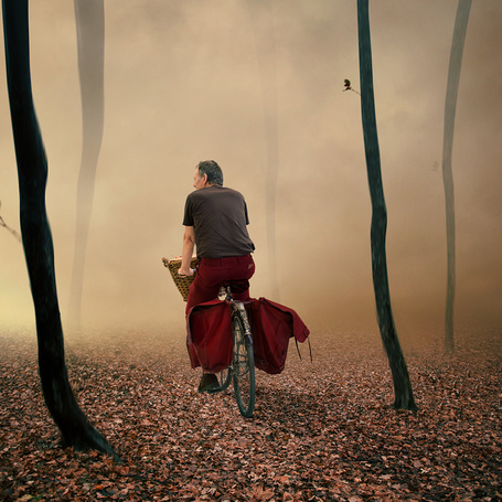 Фото Мужчина, едущий на велосипеде по опавшей с деревьев осенней листве в глубь леса, покрытого густым туманом, фотография Garas lonut