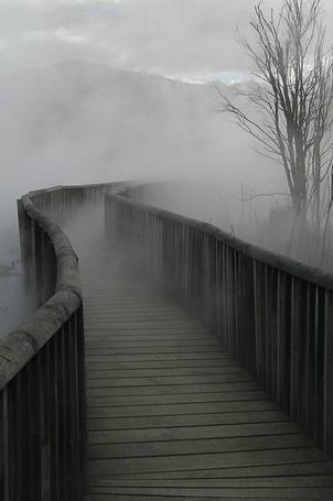 Фото Деревянная дорога с перилами окутана туманом