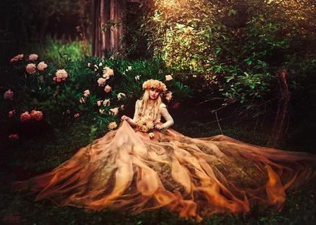 Фото Девушка в персиковом платье сидит в окружении пионов, фотограф Svetlana Belyaeva / Светлана Беляева