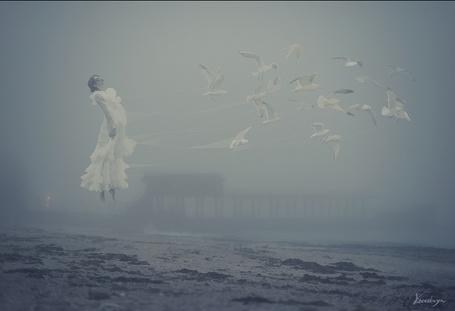 Фото На пустынном туманном берегу моря чайки поднимают в воздух девушку в белом платье, фотограф Елена Визерская (Кассандра)