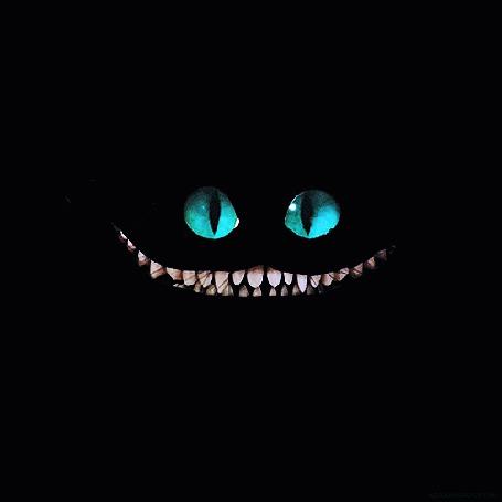 Фото Моргающий на черном фоне Cheshire Cat / Чеширский кот