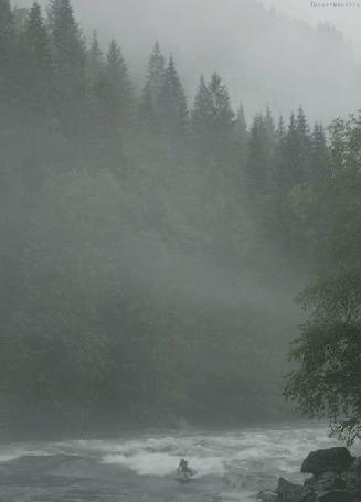 Фото Мужчина рассекает волны реки на серфинге, вокруг него лес окруженный туманом