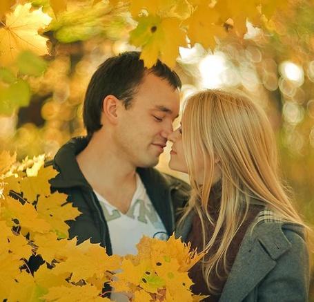 Фото Влюбленная пара нос к носу, на фоне веток пожелтевших листьев клена (© РоссАлекс), добавлено: 26.06.2013 00:03