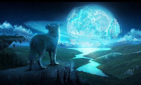 Фото Белый волк стоит на краю скалы и смотрит на полную луну, на фоне звездного неба и кучевых облаков