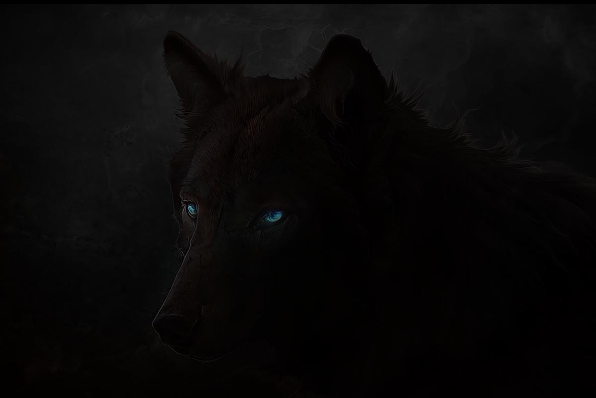 Фото Черный волк с голубыми глазами, художник xXNamaste
