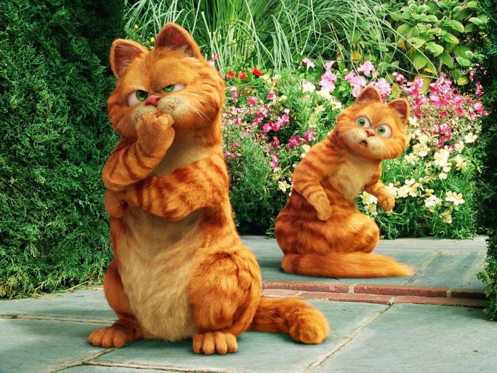 Смотреть онлайн кот гарфилд 29 фотография