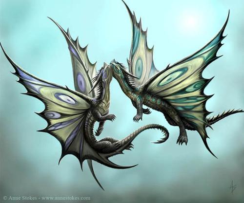 Фото Два дракона парят в небе