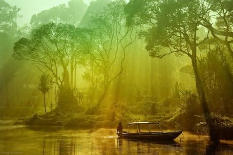 Фото Парк Гунунг-Лесер, Индонезия / Gunung Leuser, Indonesia, фотограф Yoga Pratama / Йога Пратама (© ), добавлено: 01.07.2013 16:48