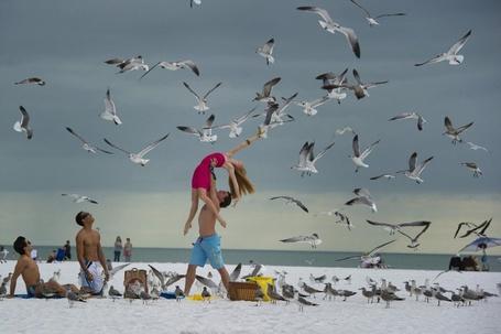 Фото Мужчина поднял девушку в верх, что бы она смогла прикоснутся к чайкам летающими над ними