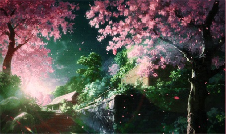 Фото Падающая розовая листва с цветущих деревьев