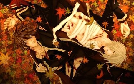Фото Два окровавленных парня перевязанных бинтами, лежат на осенних листьях