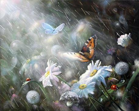 Фото Бабочки возле ромашек и одуванчиков под летним дождем, художник Желонкин Александр