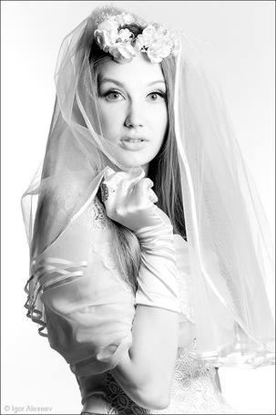 Фото Невеста, на белом фоне, фотограф Igor Alexeev / Игорь Алексеев