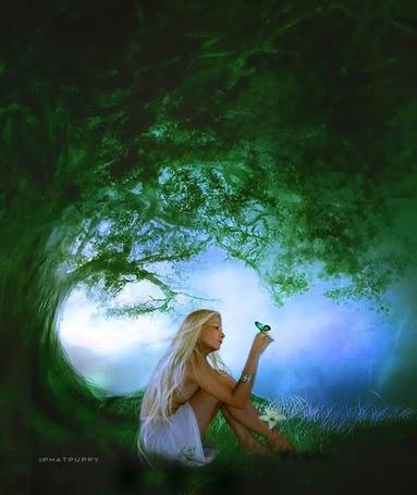 Фото Девушка с бабочкой на руке сидит под деревом, автор Fhatpuppy
