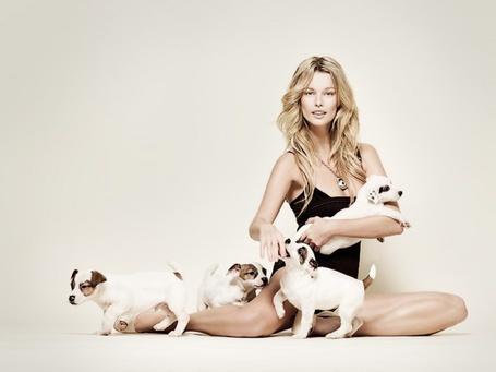 Фото Девушка в черном купальнике сидит на полу с четырьмя щенками, фотограф Adam Bartas / Адам Бартас (© ), добавлено: 27.07.2013 08:24